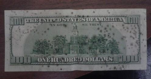 Как убрать плесень с долларов и евро. Где обменять доллар с плесенью. Как почистить доллары от плесени. Плесень на долларах что делать. Доллар с плесенью.